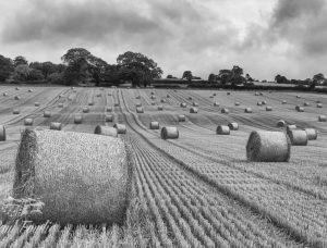 YorkshireDales